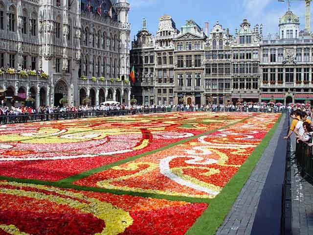 Ковёр цветов на Центральной площади